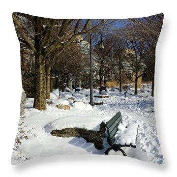 Music Garden Winter Throw Pillow