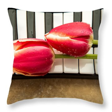 Musical Interlude Throw Pillow by Edward Fielding