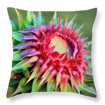 Throw Pillow featuring the photograph Musk Thistle by Teresa Zieba