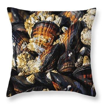 Mussel Throw Pillows