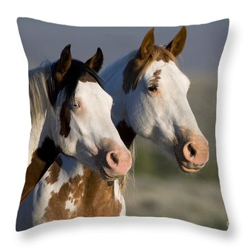 Mustang Mare And Son Throw Pillow by Jean-Louis Klein and Marie-Luce Hubert