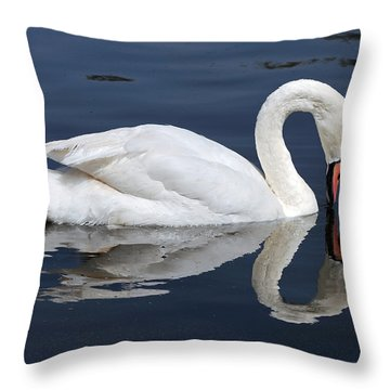 Throw Pillow featuring the photograph Mute Swan Kissing Its Reflection by Susan Wiedmann
