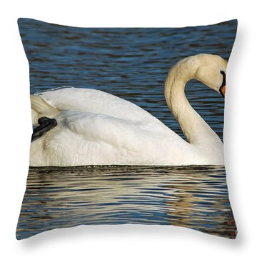 Throw Pillow featuring the photograph Mute Swan Resting by Olivia Hardwicke