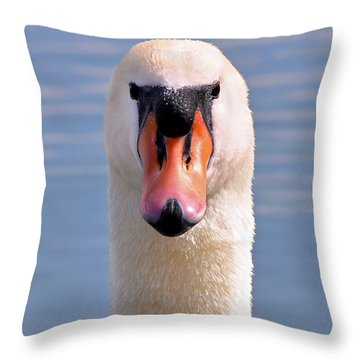 Throw Pillow featuring the photograph Mute Swan Staring by Susan Wiedmann