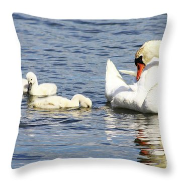 Mute Swans Throw Pillow by Alyce Taylor