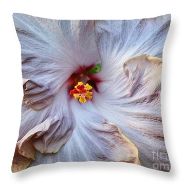 Muted Hibiscus Throw Pillow by Cindy Manero