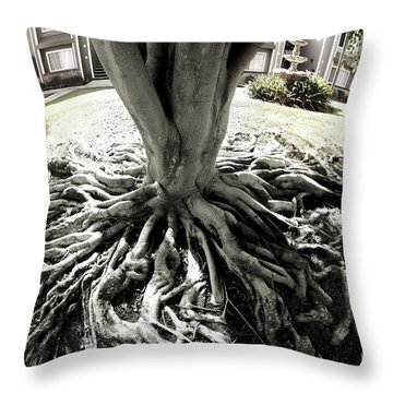 Throw Pillow featuring the photograph Muted Roots by Clayton Bruster