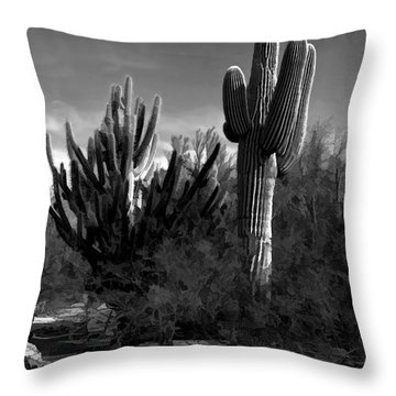 Mutt And Jeff Throw Pillow by Jon Burch Photography