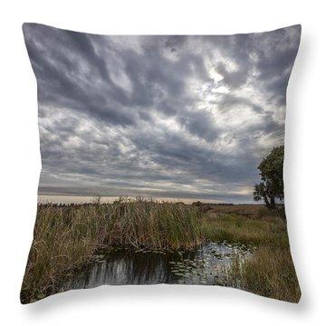 My Backyard Throw Pillow by Jon Glaser