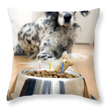 My Best Friend's Birthday Throw Pillow by Alexey Stiop
