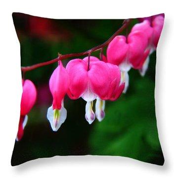 Throw Pillow featuring the photograph My Bleeding Heart by Davandra Cribbie