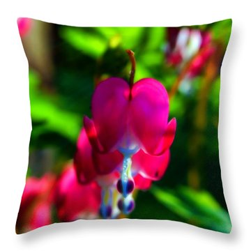 Throw Pillow featuring the photograph My Bleeding Heart by Peggy Franz