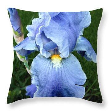 Throw Pillow featuring the photograph My Blue Iris by Doug Kreuger