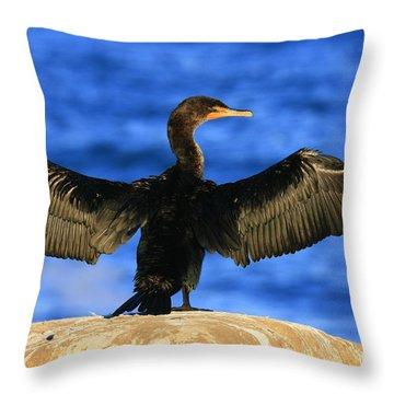 Ocean Dreams Throw Pillow