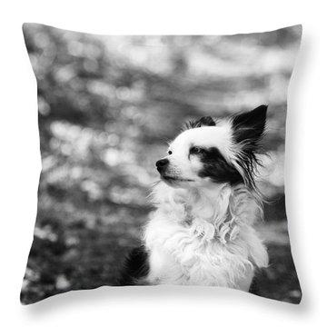 My Dog Throw Pillow by Daniel Precht