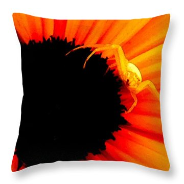 My Domain L Throw Pillow