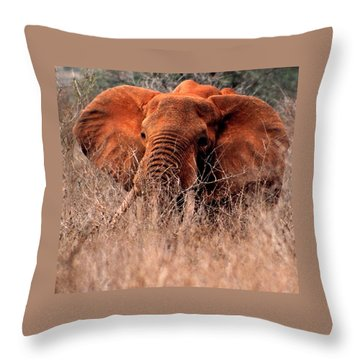 My Elephant In Africa Throw Pillow