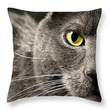 My Eye's On You Throw Pillow by Diana Angstadt