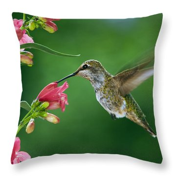 My Favorite Flowers Throw Pillow by William Lee