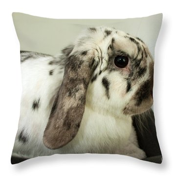 My Friend Bunny Throw Pillow