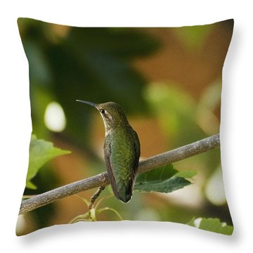 My Green Colored Hummingbird 4 Throw Pillow