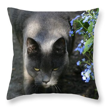 My Grey Panther Throw Pillow