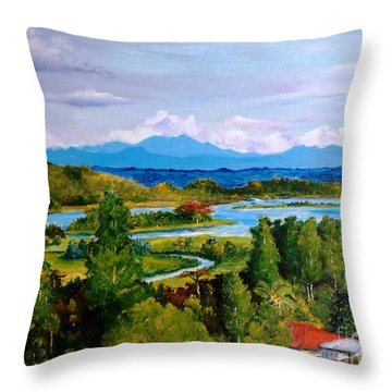 My Homeland Throw Pillow