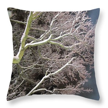 My Magic Tree Throw Pillow