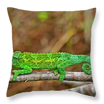 My Magical Tail Throw Pillow by Peggy Collins