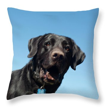 Throw Pillow featuring the photograph My Muddy Buddy by Daniel Hebard