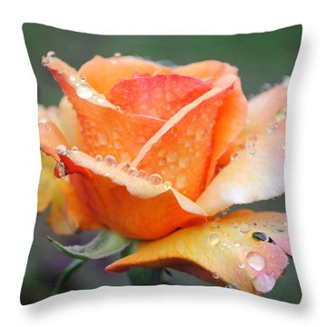 Throw Pillow featuring the photograph My Neighbor's Rose by Kate Word
