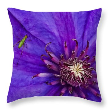 My Old Clematis Home Throw Pillow