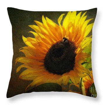 ...my Only Sunshine Throw Pillow by Lianne Schneider