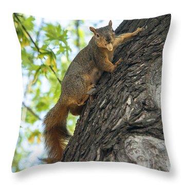 My Peanut Throw Pillow by Robert Bales