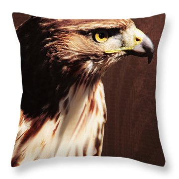 My Prince Will Come Throw Pillow by Floyd Menezes