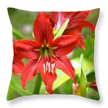 My Red Daylily...after The Rain Throw Pillow