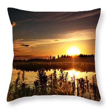My Sandy Floors  Throw Pillow