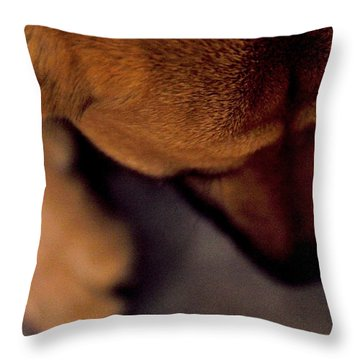 My Soul To Keep Throw Pillow