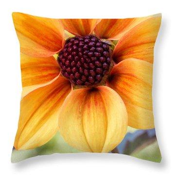 My Sunshine Throw Pillow by Heidi Smith