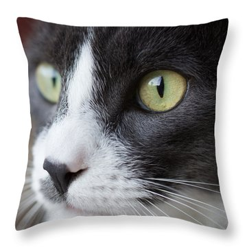 Throw Pillow featuring the photograph My Sweet Boy by Heidi Smith