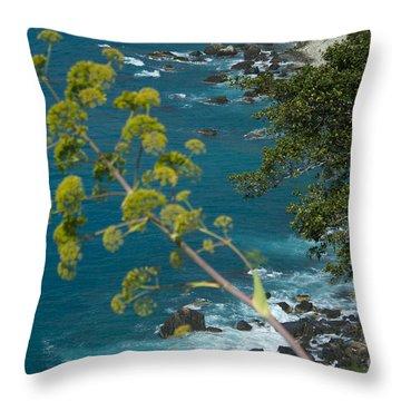 My Taormina's Landscape Throw Pillow
