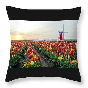 My Touch Of Holland 2 Throw Pillow by Nick  Boren