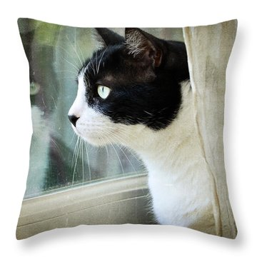 My View Throw Pillow by Fraida Gutovich