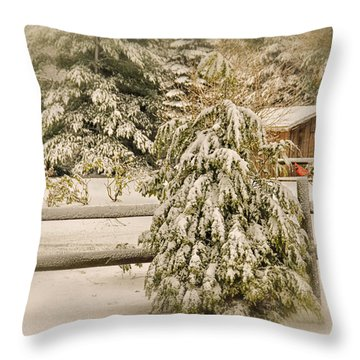 My View Throw Pillow by Mary Timman