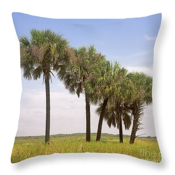 Myakka Throw Pillow