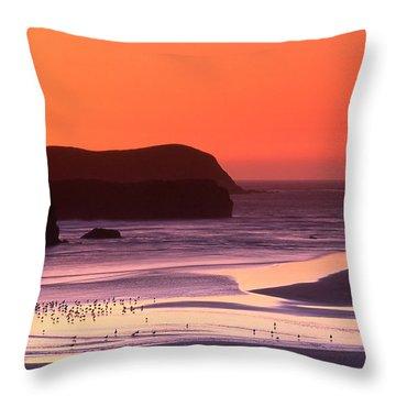 Myers Creek Sunset Throw Pillow