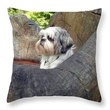 Mylos Throne Throw Pillow