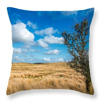 Throw Pillow featuring the photograph Mynydd Hiraethog by Adrian Evans
