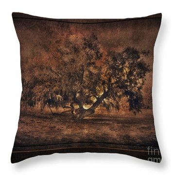 Mysterious Mesquite Throw Pillow