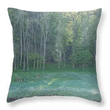 Mysterious Elbe Woods Throw Pillow
